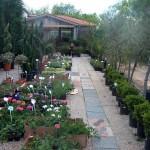17-pb-hortikultura-galerija-13042015