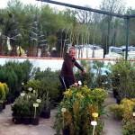 18-pb-hortikultura-galerija-13042015