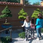25-pb-hortikultura-galerija-13042015